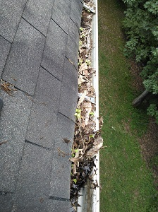 Gutter Cleaning in Winter