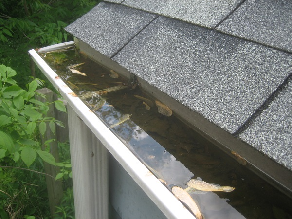 Access Maintenance Provide Gutter Clearing